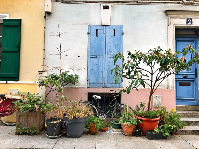 Paris Streets Of Paris Rue Crémieux Plant Potted Plant Growth Architecture Built Structure Building Exterior No People