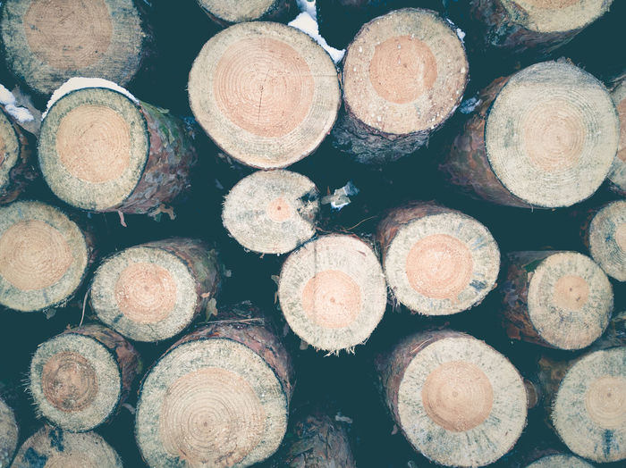 Beautifully Organized Close-up Deforestation Eye4photography  EyeEm Gallery Forestry Industry Full Frame Large Group Of Objects Log No People Organized Pattern Snow Stack Timber Winter Woodpile