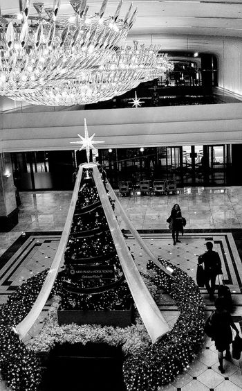 Keio Plaza Hotel Lights Tree Plush Interior Meeting Point Level 2 Tokyo Japan Bnw Bnwphotography Bnwcollection Bnw_tokto Travelphotography B&w Street Photography