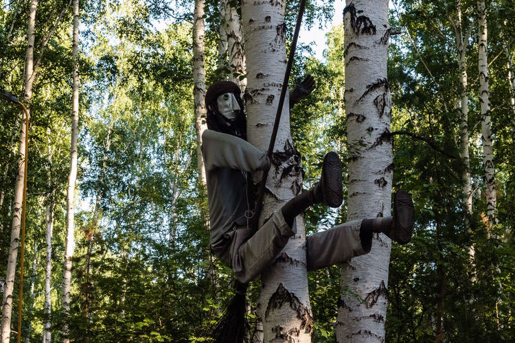 The character of russian fairy tales baba yaga with a broom sits on a tree.