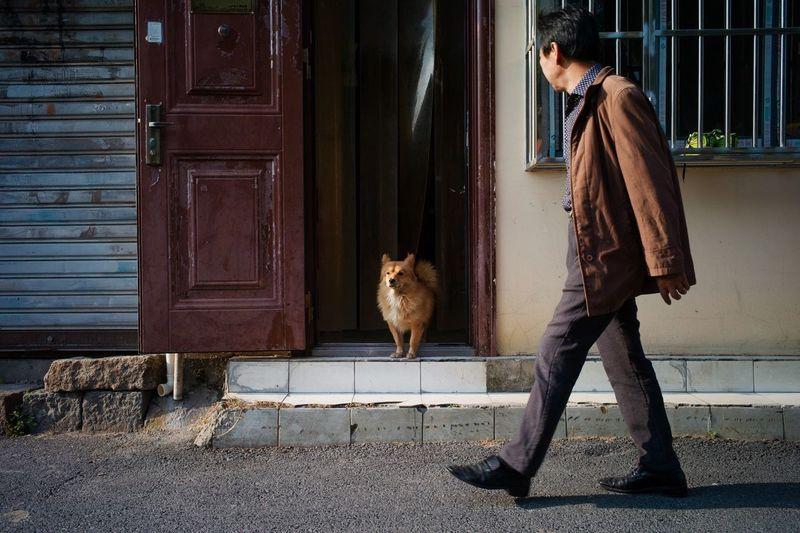 Woman with dog in front of door