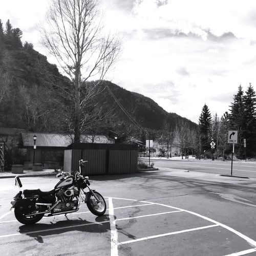 Wheels Motorcycle Mountains Mountain Blackandwhite Contrast Mode Of Transport Outdoors No People Mountain View Shadow Colorado Tree Arrow Rural Nature The Drive Monochrome