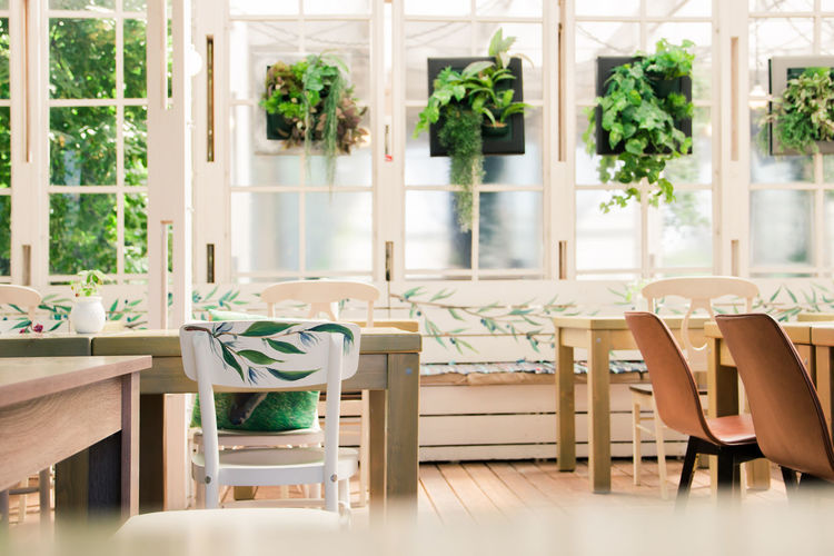 cafe, summer terrace Seat Chair Table Day Window Wood - Material Indoors  Furniture Glass - Material Transparent Business Empty Restaurant Human Body Part Lifestyles Green Color Nature One Person