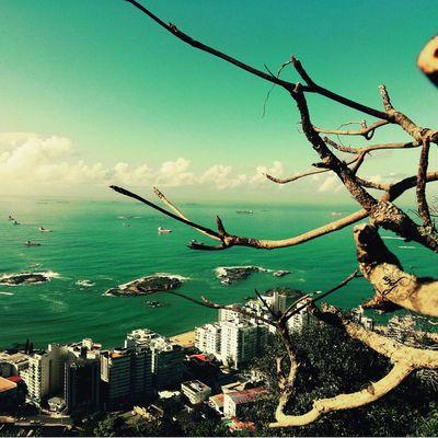 Bom Dia ❤ First Eyeem Photo Natureza 🐦🌳 Avare SP BRASIL 🇧🇷☀️ Curti Ai Foto Mi Amor ♥ Mumuzinho Instagram Secret Garden