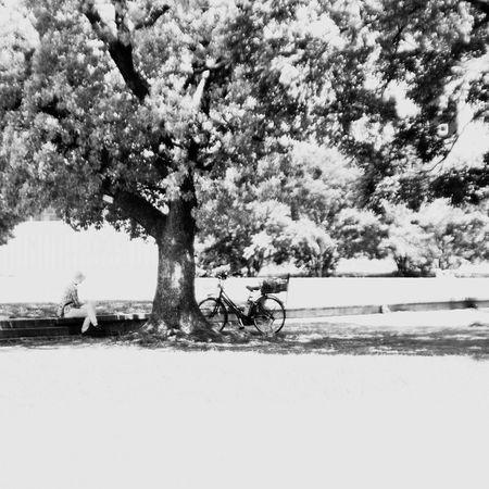 そろそろ連休欲しいな。2日間でいいし。 EyeEm Gallery Pentax Oldlens Monochrome Bw_lovers Black & White Blackandwhite Pentax Pentax K-5 BW Collection Jupiter9