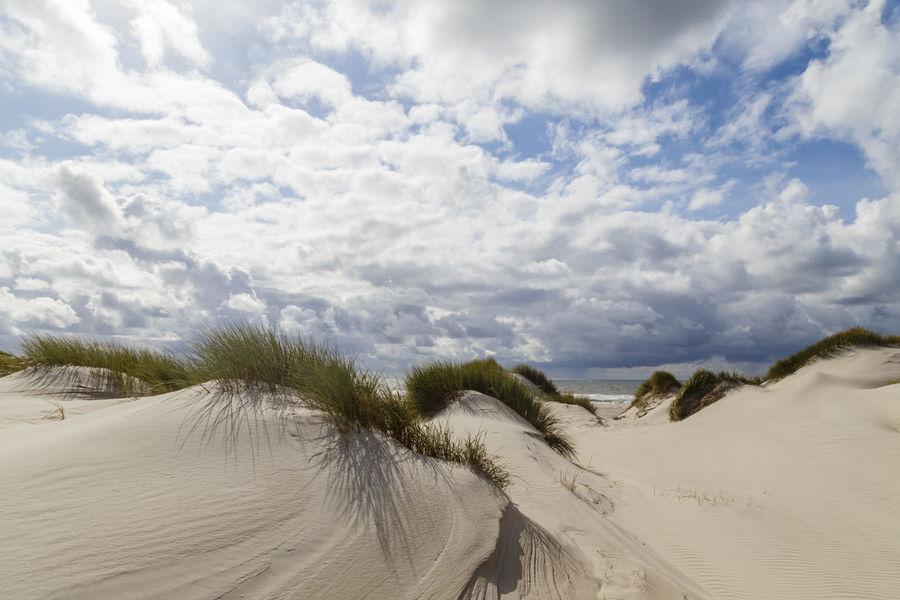 sand dunes on Amrum, Germany Amrum Amrum Kniepsand Amrum Beach Beach Beauty In Nature Cloud - Sky Day Germany Landscape Marram Grass Nature No People Outdoors Sand Sand Dune Scenics Sky Tire Track Tranquil Scene Tranquility