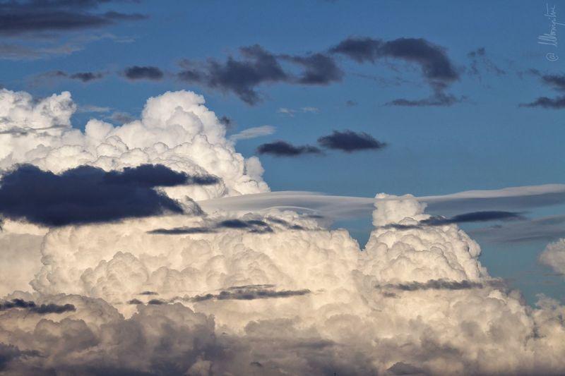 WeatherPro: