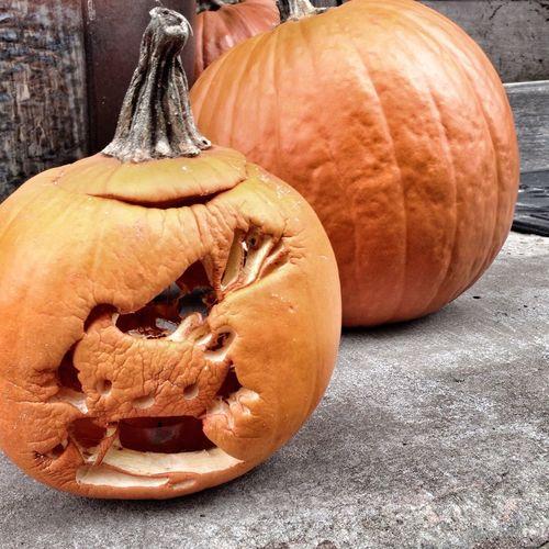 Halloween Pumpkin Hello Kitty Cat Content