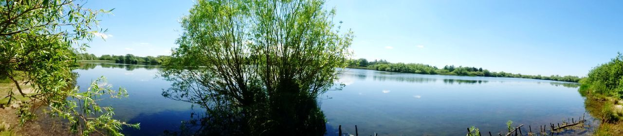 Water Lake Reflection Tree Sky Nature Day Tranquility Outdoors No People Plant Beauty In Nature Scenics Summer Freshness Beauty In Nature Clear Sky Tree Nature Landscape Flood Plant Rural Scene Agriculture Grass