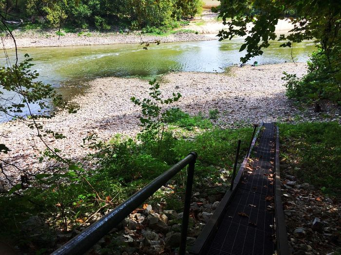 Walkway down to river Water High Angle View Nature Tree River Outdoors No People Beauty In Nature Tranquility Day Tranquil Scene Grass Scenics Sky White River Flowing Water Walkway Riverside River View