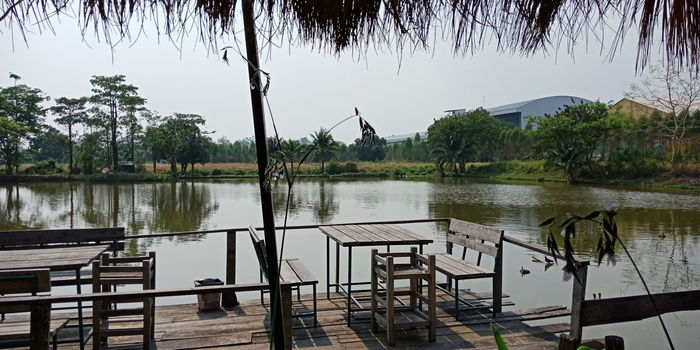 Water Tree Lake Reflection Rural Scene Flood Sky Landscape