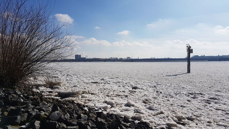 Sonne Blauer Himmel Bluesky Sunny River Germany Hamburg Winter Elbe Eis Eisschollen Water Sea Sky Horizon Over Water Cloud - Sky Cold Frozen Snow Frost Cold Temperature Weather Condition