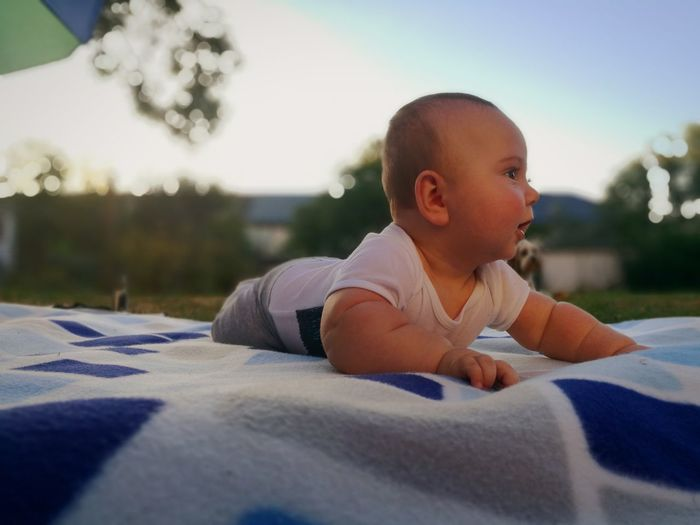 Cute Baby Boy Lying On Picnic Blanket At Park