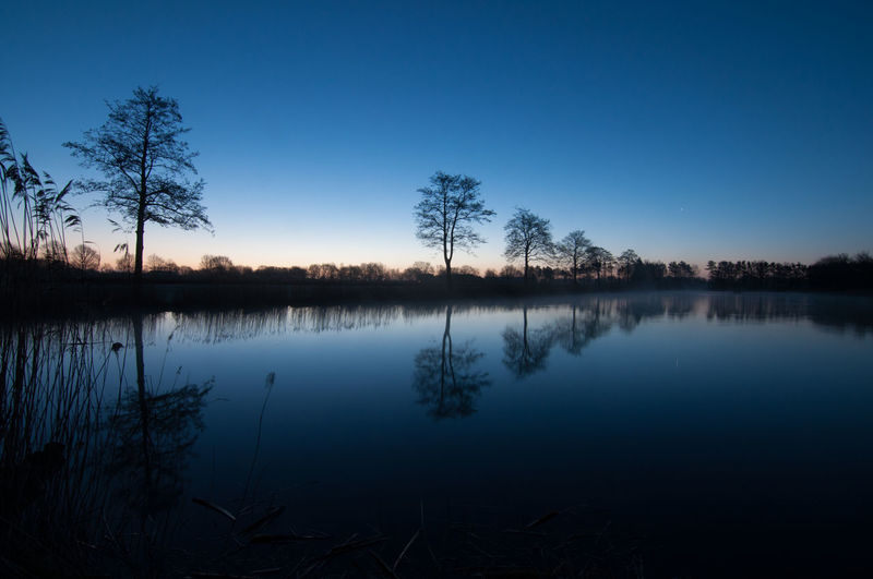 Scenic view of silhouette trees by lake against sky at night