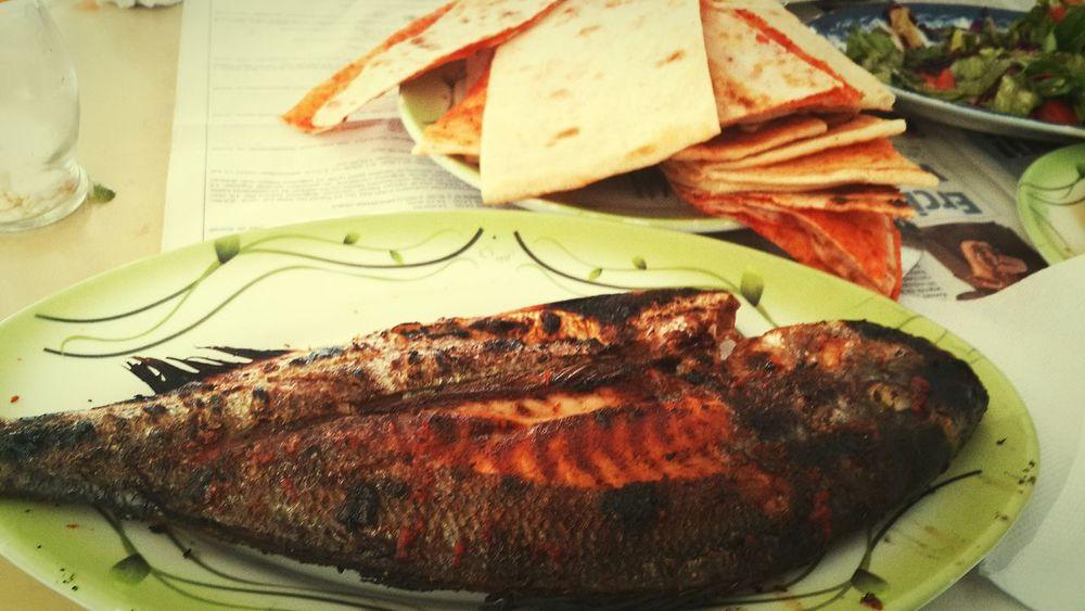 Latakiacountryside Latakia  Lattakia Syria  Fish Lunch Lunch Time! سوريا سورية اللاذقية