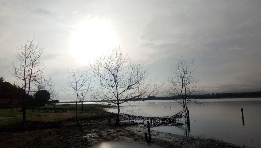 ท้องฟ้ายามเย็น วิวสวย Thailand นครราชสีมา Thailand Photos เด็กเทคนิค ท้องฟ้า Bird Water Sunlight Lake Sunset Sky Animal Themes Cloud - Sky Flock Of Birds Silhouette Countryside Sun Idyllic Sunbeam Geese Sunrise Streaming Shining Large Group Of Animals