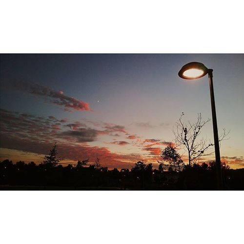 Instasize Vscocam Vscolovers Madeinpt Jrodrigues Photographer Photograph Vsco_pt Sunsetlovers Sunset Summer Sun Parquedacidade Fafe Municipiofafe VSCO Presets Photooftheday Thebest Top Photooftheday Running Run