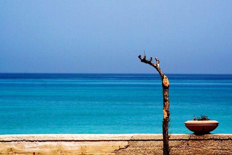 Horizon Sicily