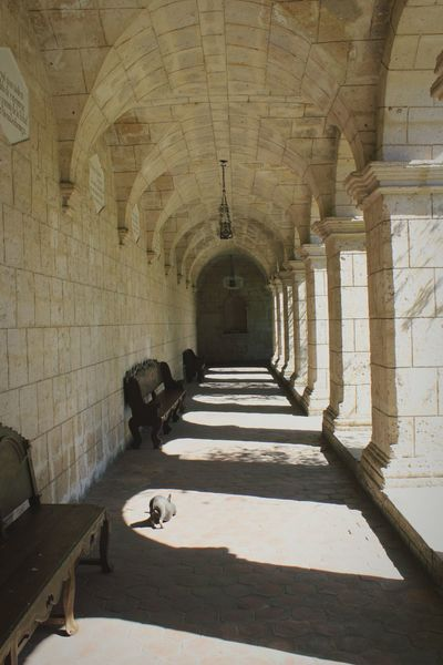 Cloister Arch Shadow History Day Architecture Indoors  Sunlight Corridor No People Museum Of Art Building Exterior Travel Destinations Architecture