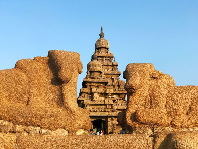 Took a day trip to the #shoretemple at the#worldheritagesite of #Mahabalipuram. The beautiful romantic wind and sea ravaged shore temple is always a delight to visit. A highly photogenic 8th Century architecture, this temple is all hand made, carved out of blocks of granite and does not have any pillar for support. With the constant flow of tourists it is indeed a challenge to photograph the temple, let alone find a unique perspective. This is what I could manage. Hope you like it. Travel Destinations Architecture
