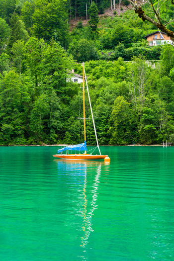 Sailboat in lake against trees in forest