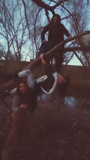 We also jump into trees. We love it Chihuahua, Mexico Today's Shoot TreePorn Treescollection