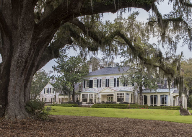 Architecture Brays Island Building Exterior City Day Live Oak No People Outdoors Plantation House Tree