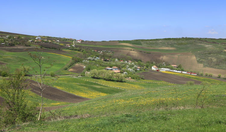 Hilly landscape Village Countryside Background Environment Green Agriculture Beauty In Nature Farm Field Landscape Nature Outdoors Rural Scene Scenics Tranquil Scene Sky