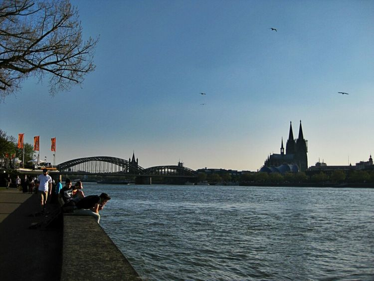 Cologne, the sunny side of life.