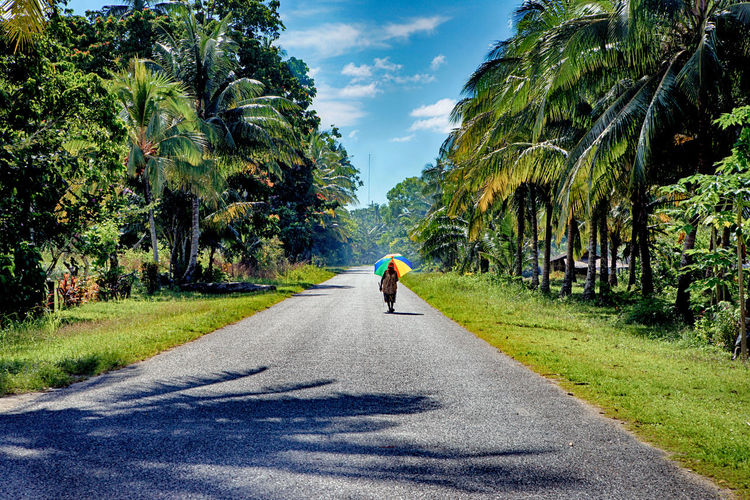 Road Tree Transportation Direction The Way Forward Rear View Plant Full Length Nature One Person Green Color Walking Day Growth Sky Real People Tropical Climate Sunlight Diminishing Perspective Outdoors