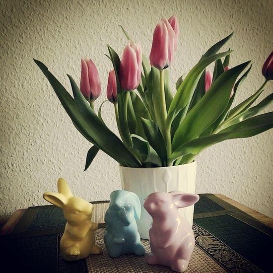 Heute wird ein wenig für Ostern gebacken und vorbereitet Ostern Easter Bunnys Osterhase