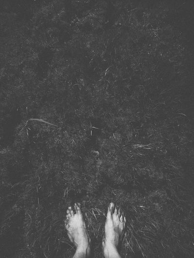 my leg in the dark grass Leg Human Body Part Human Leg Darkness Grass Blackandwhite Bnw Monochrome Mood Mobilephotography VSCO Vscocam Vscoasia Vscovietnam Real People Low Section Body Part One Person Lifestyles Personal Perspective Unrecognizable Person barefoot Standing Nature Day Land Directly Above Human Foot Women Adult Leisure Activity Outdoors Finger Human Limb