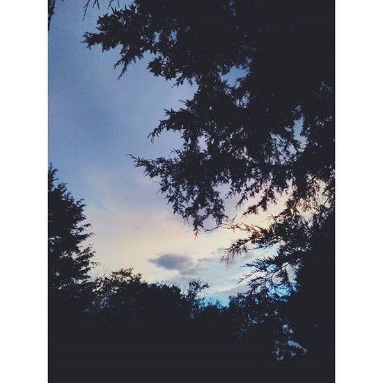 301 days till I see you again, oh summer how I miss you already... Summerimissyou Imsorryitookyouforgranted Itwonthappenagainipromise Photographyskillsonpoint BeautifulSunset