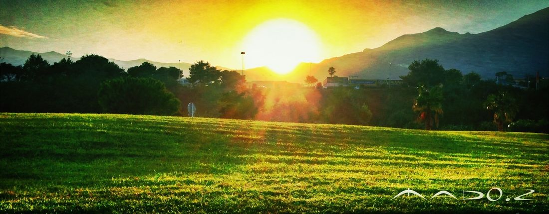 Things That Are Green Sun_collection Sunrise_sunsets_aroundworld Sunset_collection
