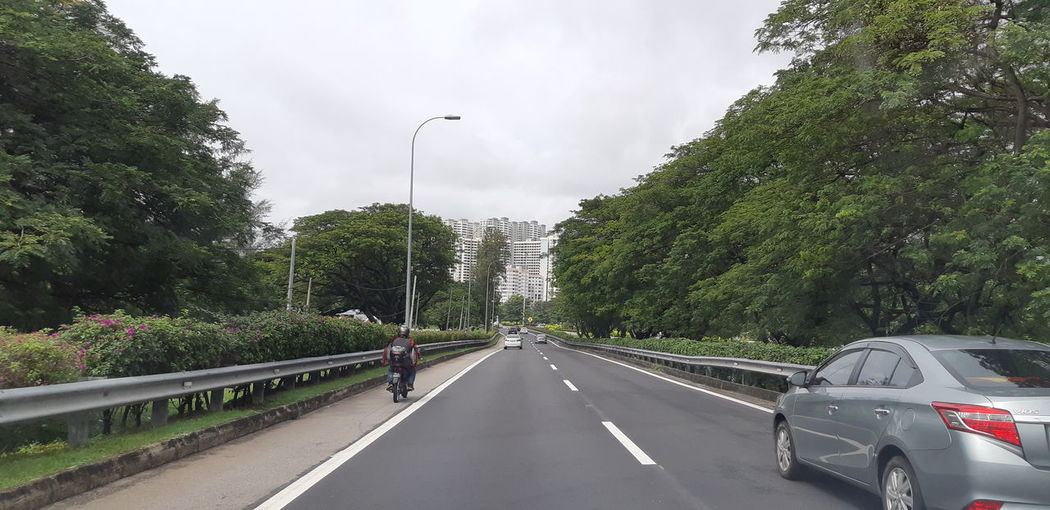 Green Nice Weather Go Green Tree City Road Cityscape Car Sky Cloud - Sky vanishing point Pathway The Way Forward Road Marking Bicycle Lane Treelined Office Building Moving Street Light Empty Road Overcast Dividing Line