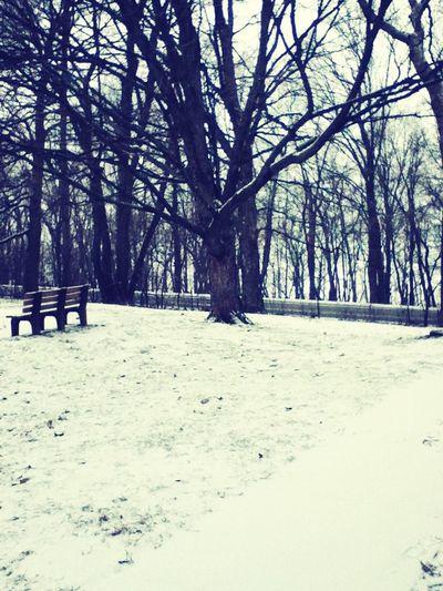 My 1st Snow This Winter (: