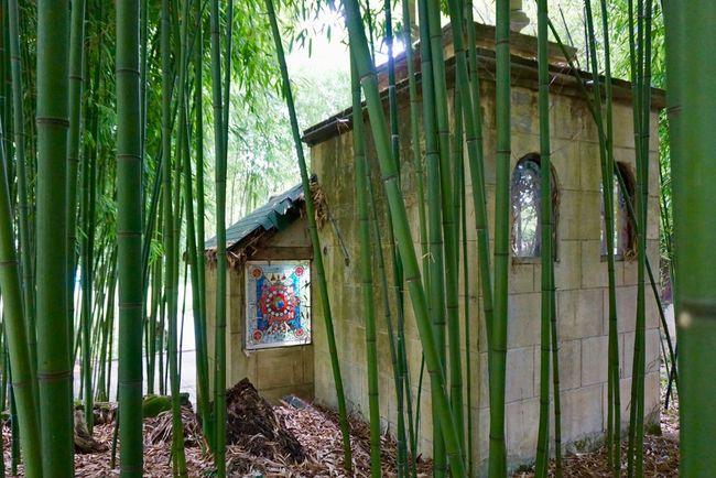 Green Mosaic Mosaic Tiles Moulin De Chaves Sunlight Architecture Bamboo Buddhism Buddhist Temple Day No People Outdoors Temple Window
