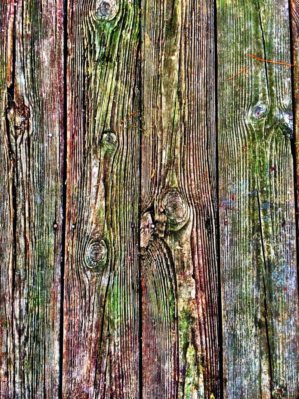 tree trunk, nature, wood - material, backgrounds, full frame, tree, outdoors, no people, growth, textured, day, close-up, wood grain, tree stump, tree ring