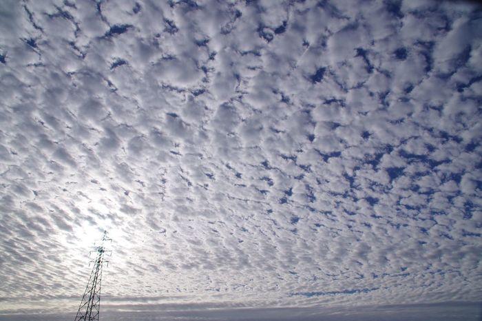 Sky Cloud - Sky 青空 淀川