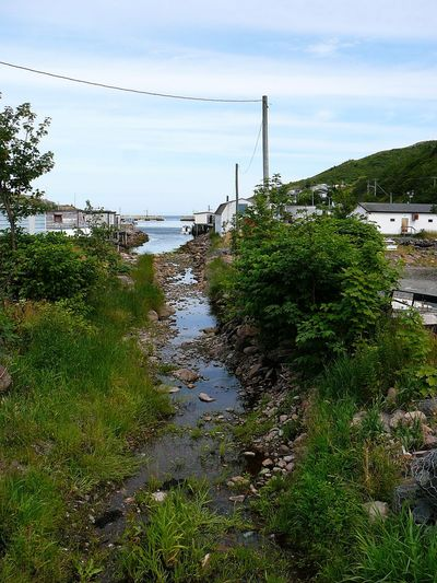 View Towards Petty Harbour ~ Day Environment Extreme Weather Fishing Boats Fishing Village Flood Grass Inlet Landscape Nature Newfoundland No People Outdoors Sky Stream Tree Water