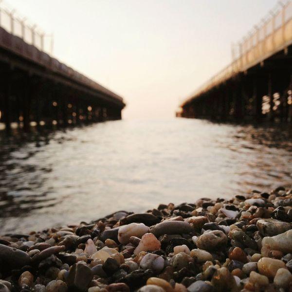 Mornin' glory Sea Postalita
