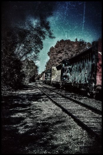Tree Railroad Track Rail Transportation Nature Transportation Outdoors The Way Forward No People Sky Day Beauty In Nature Abandoned Train Long Eerie Beautiful Unique