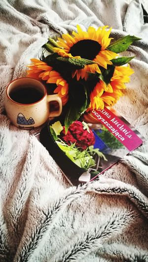 Flower Drink Tea - Hot Drink Bed Herbal Tea High Angle View Flower Head Close-up Food And Drink