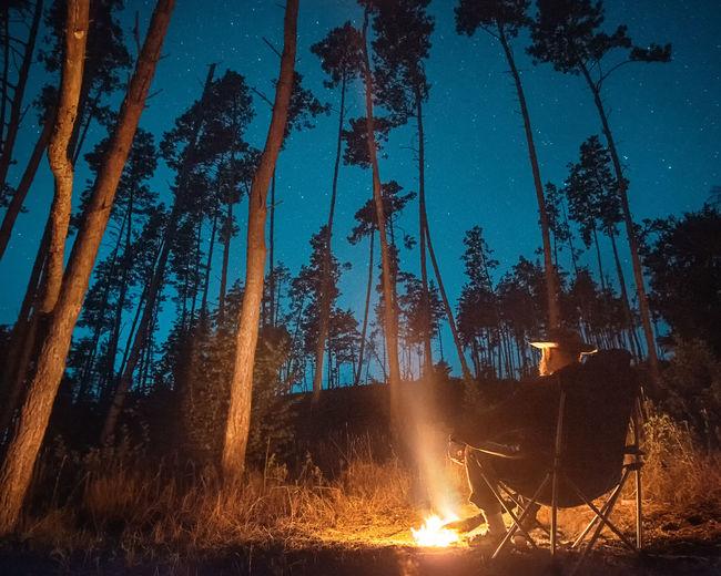 Panoramic shot of bonfire against trees at night