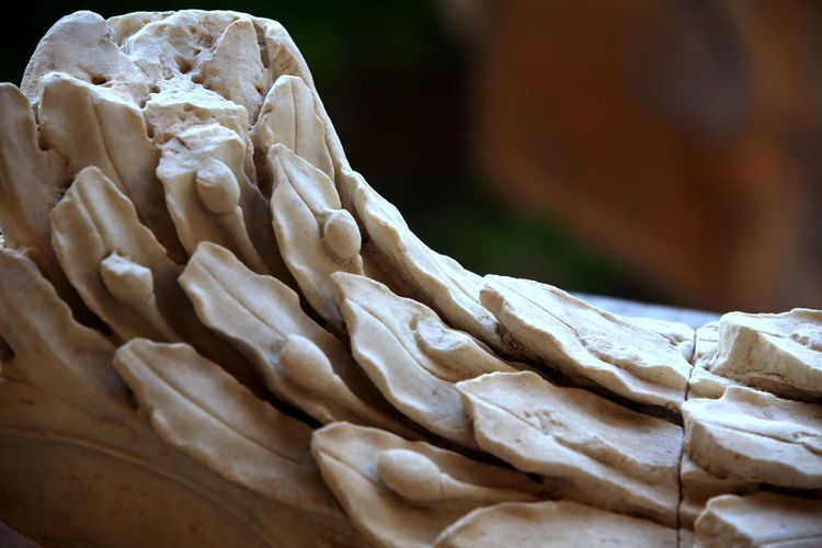 Public exhibition of marble's unknown fragment of one old roman decoration