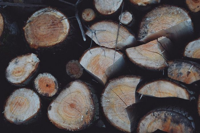 Full Frame Backgrounds Timber Wood Lumber Industry Log Firewood Close-up Wood - Material Textured  Pattern Nature Tree Deforestation