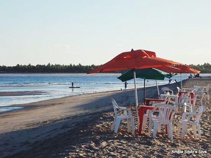Beach Water Nature Candeias Beach Coqueiros Guardasol Brasil