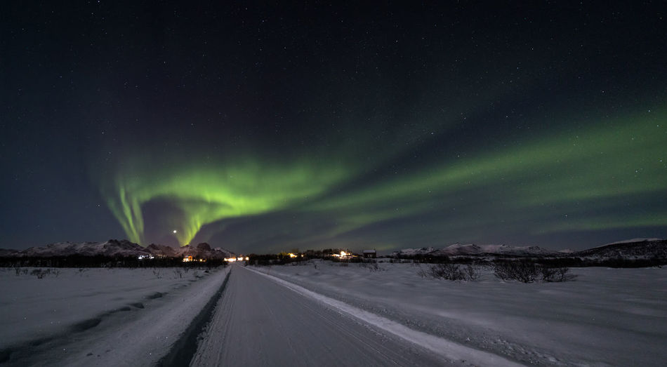 Astronomy Aurora Borealis Aurora Polaris Beauty In Nature Cold Cold Temperature Green Landscape Light Natural Phenomenon Lofoten Nature Night Northern Lights Norway Panoramic Road Scenics Snow Star - Space Straight Forward The Road To Nowhere The Way Forward Vesterålen Village Winter