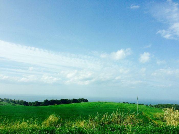 Sky Landscape Environment Beauty In Nature Cloud - Sky Grass