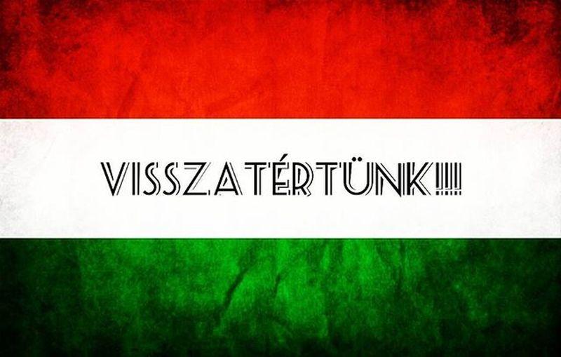RIA-RIA HUNGÁRIA!!!⚽⚽⚽⚽ Megyünk az EB-re!!!! Hajrámagyarország Euro2016 Hungary Football Szépvoltfiúk Kijutottunkbazdmeg 86utánelőször Magyarválogatott